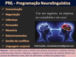 Curso PNL1